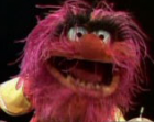 Animal_Muppetsmall